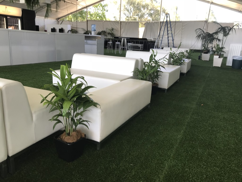 Bamboo Palms Lge Table Plant