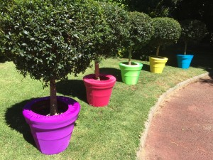 a. Coloured Pot covers