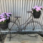 Rustic Bike with Flowers
